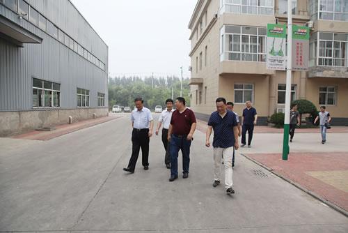 霸州市委领导冒着高温闷热天气对我公司进行走访调研